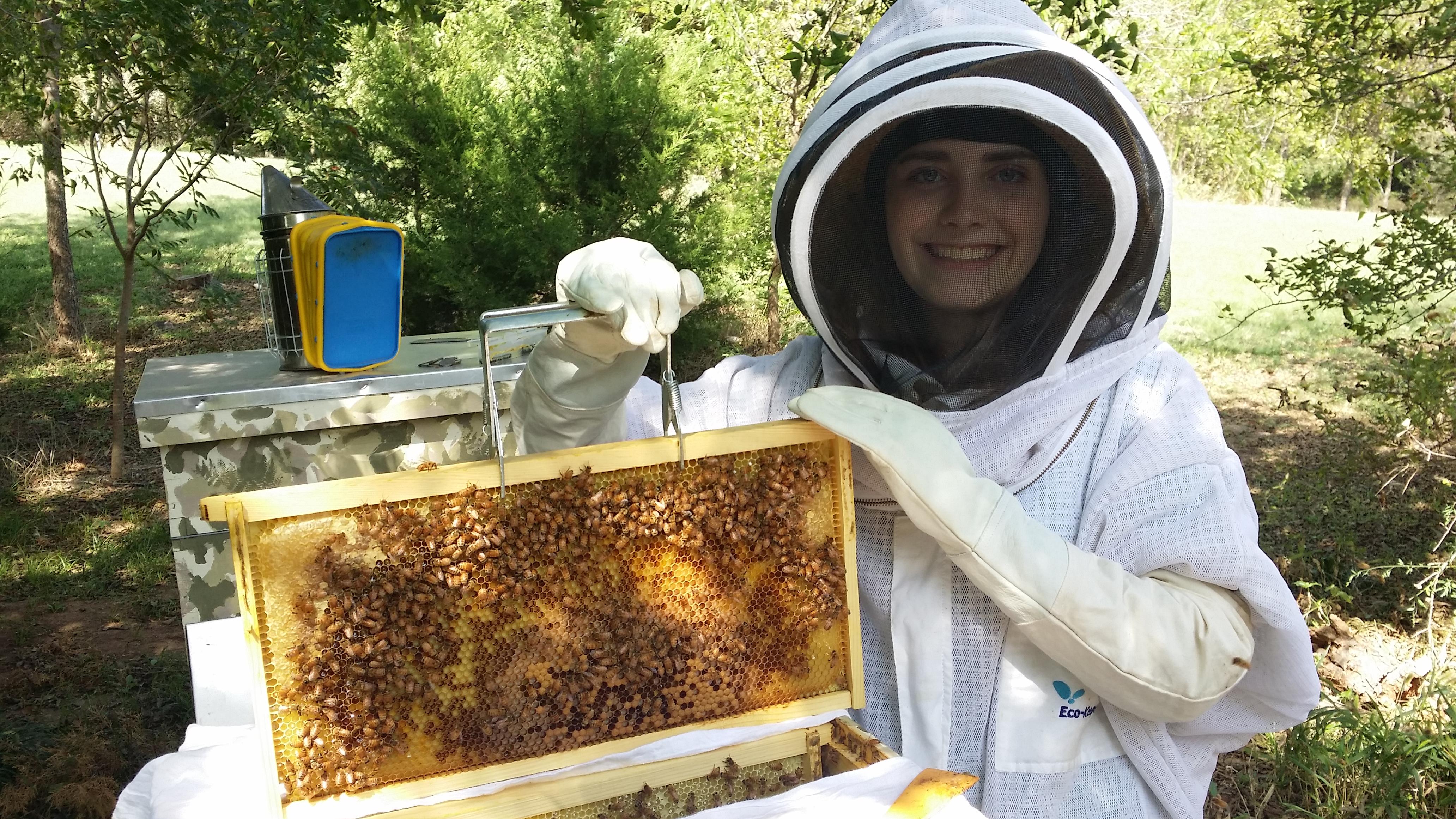 beekeeping-101-training