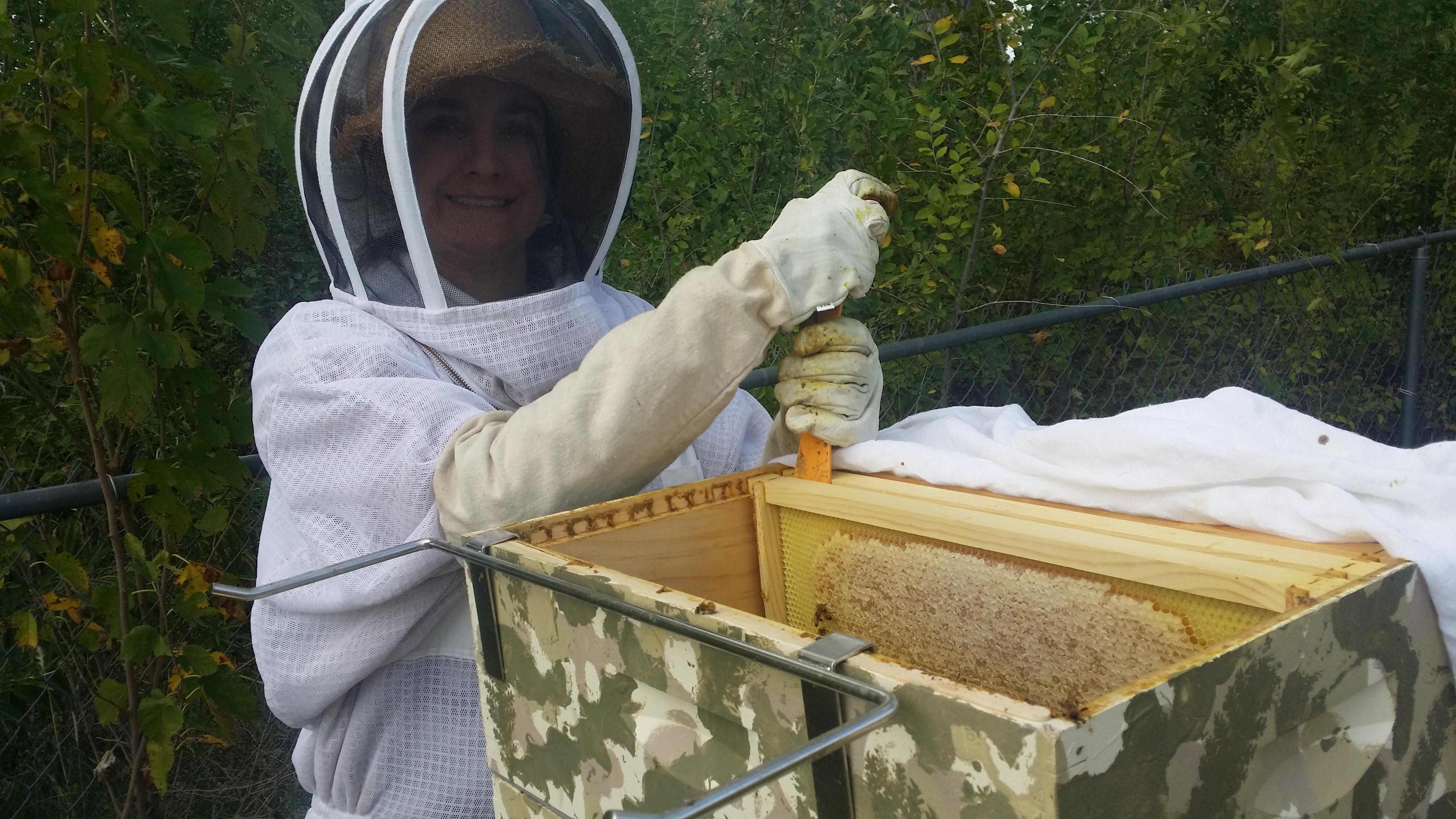 About Queen Bris Honey