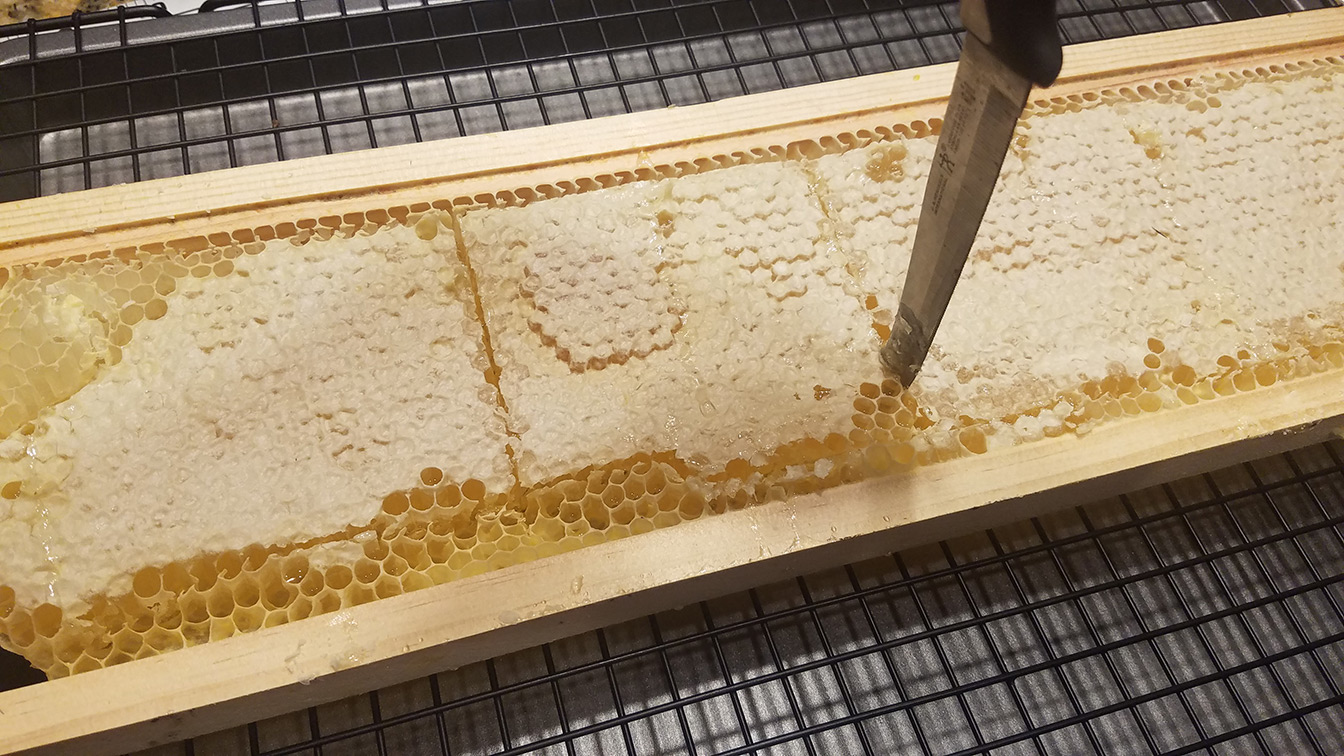 cutting comb honey