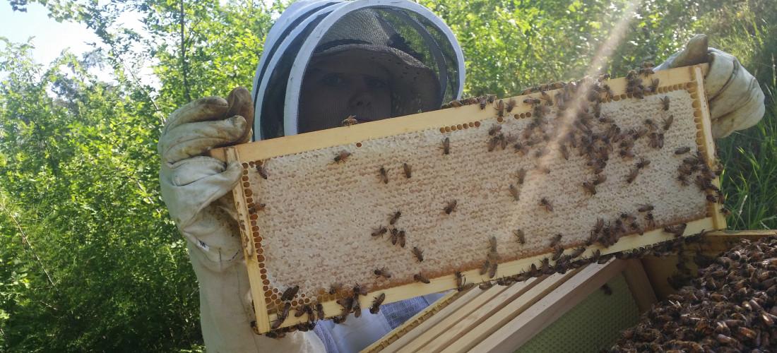brianna-holding-honey-comb